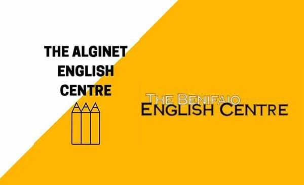 Diseño web Alginet